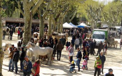 Foire aux chevaux – Familiale et solidaire
